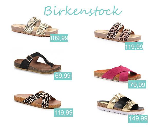 Birkens_final